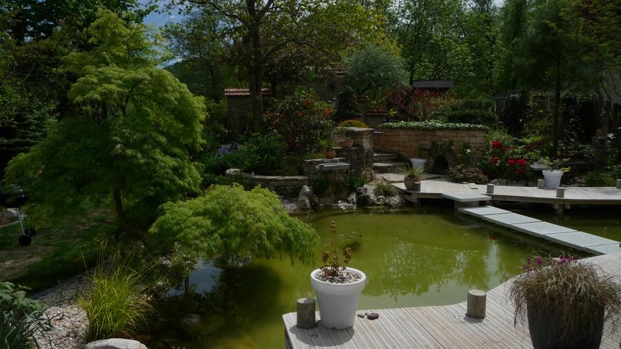 Paysagiste Vosges : bassin design