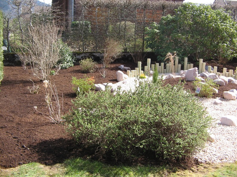 Evasion jardin paysagiste r f rences massif avec minimun d for Entretien jardin 47